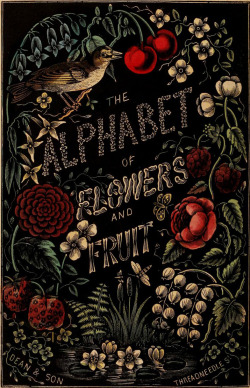 geisterseher:  The Alphabet of Flowers and Fruit. London: Dean & Son, 1856