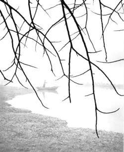 adanvc:  by Fan Ho