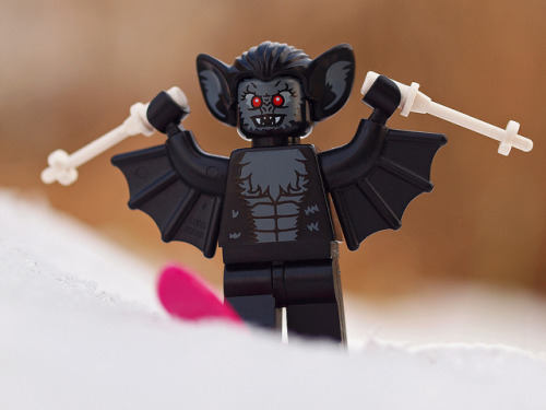 manbat enjoying winter by Johnson Cameraface on Flickr.