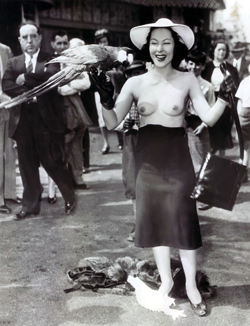 burleskateer:  An astonishing Press Photo from May of '39.. It features a bare-breasted Yvette Dare, losing part of her dress; on the fairgrounds of the 'New York World's Fair'.. Her press agent contrived the publicity stunt to promote her upcoming show there. Upon hearing a visual cue, her pet macaw had been trained to remove her top and brassiere..