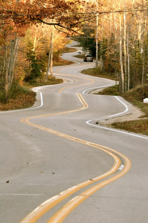 canudinhodetoddynho:  The Winding Road by Allison Hare
