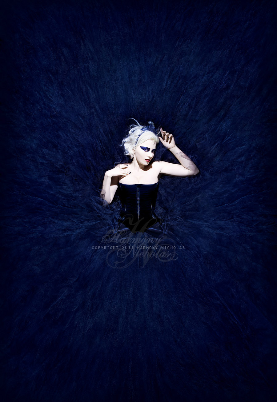 Title: 'In the Realm of the Black Swan'Photographer/concept/edit: Harmony NicholasDesigner: Tentacle ThreadsMUA: Me…sort of