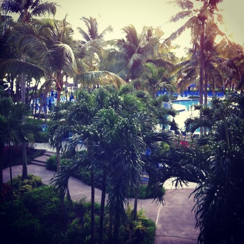 Wish the fan were here with me.  (at Wyndham Rio Mar Beach Resort & Spa)