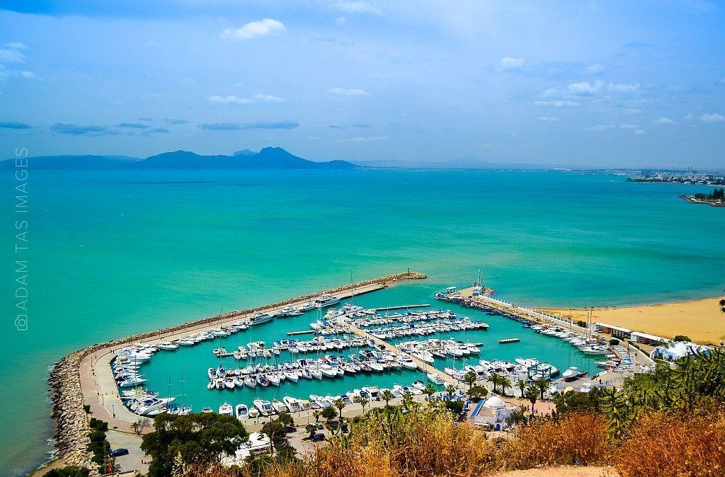 Sidi Bou Said. Charming blue and white.   tumblr inline npfrgqmLxw1tqllg4 1280