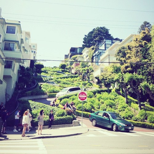 The popular Lombard Street (one of the most winding streets in the world), SF