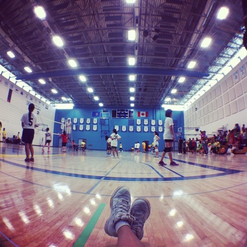 19: [my favorite view] #fmsphotoaday #volleyball #shoes #kicks #gym #view #lights #fromwhereistand #igers #instadaily #instagood
