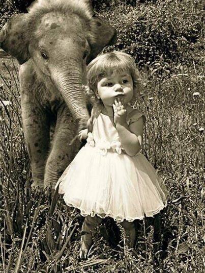 Little girl and baby elephant