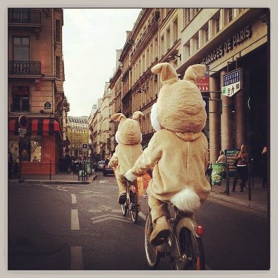 Bunnies on bikes!  My friend James took this picture, and I'm in love with it.