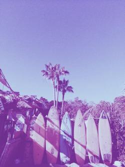 allboardingadventures:  Surf - Snow - Skate