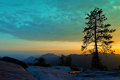Beetle Rock Sunset #1, Sequoia National Park (by flatworldsedge)