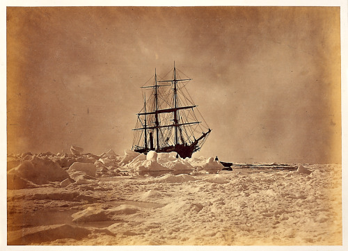 vonmurr:  William Bradford The Arctic regions, 1873