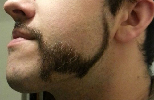 laughingsquid:  Teacher Shaved His Beard To Look Like Two Different Dinosaurs