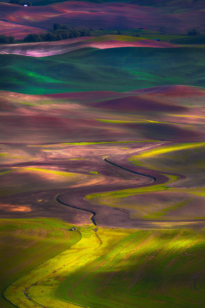 travelingcolors:  The Palouse, Tapestry Of Colors | Washington (by Kevin McNeal)