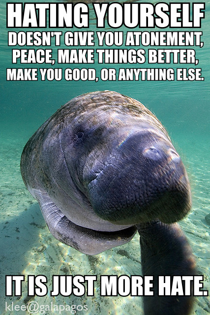 "calmingmanatee:  [Image description: A photograph of a manatee straight on, one fin tucked underneath it and the other reaching for the camera. The water is tinted cyan and the sand is white beneath it. TEXT: ""Hating yourself doesn't give you atonement, peace, make you better, make you good, or anything else. It is just more hate.""] [Image credit]  Search the ""calming manatees"" meme for uplifting messages."