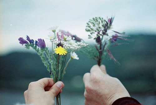 arquerio:  ♥ by Joana Rosa Bragança on Flickr.