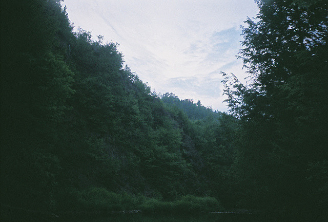 savvydarling:  untitled by dream states on Flickr.