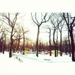 #snow #park #winter #trees