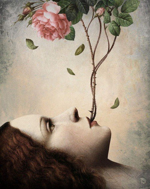 frenchtwist:  via darksilenceinsuburbia:  Christian Schloe.     and here