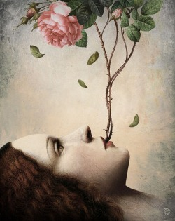 luna-vespertine:  Christian Schloe.   Arise a Rose