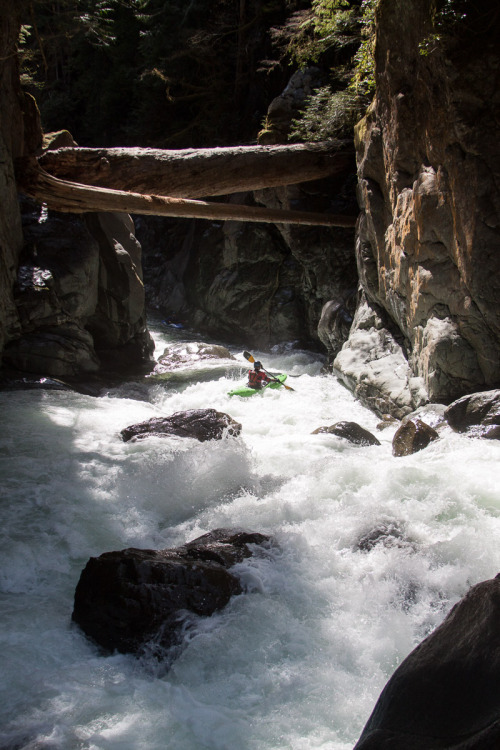 raftinglife:  Joe box on the Lens River, Vancouver Island, BC