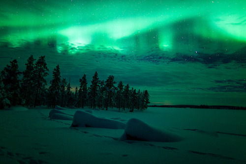 oceansing:  A Lappish Night by The Aurora Zone on Flickr.