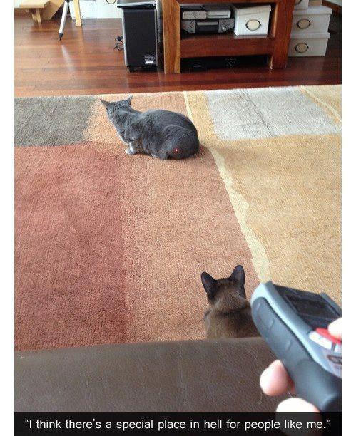 raised-by-direwolves:  Evil Genius.  Satan, get off my throne
