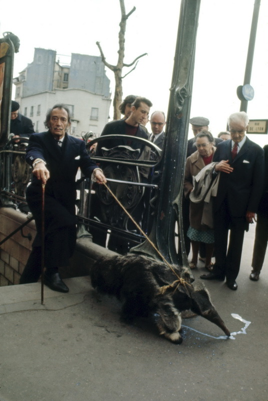 Salvador Dali taking his Anteater for a walk, Paris 1969.