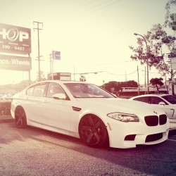 Slammed F10 M5 @theshopcc @dpe_mike @dpe_sean #dpe #dpewheels #rundpe #love #instagood #tweegram #photooftheday #iphonesia #instamood #m5 #igers #picoftheday #iphoneonly #instagramhub #summer #instadaily #jj #beautiful #bestoftheday #bmw #igdaily #webstagram #picstitch #nofilter #fashion #happy #sun #instagramers (at The SHOP)