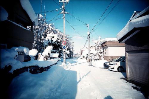 dreams-of-japan:  In front of my house by convexstyle on Flickr.