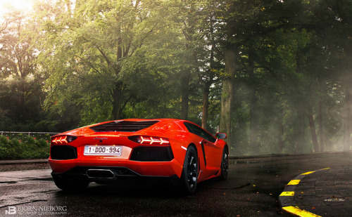 biohazxrd:  Aventador by BjornNieborg on Flickr.