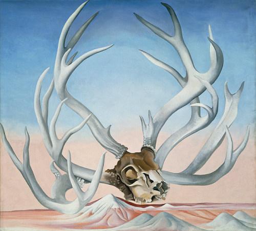 "heroezandvillainz:  From the Faraway, Nearby by Georgia ""Chief"" O'Keeffe"