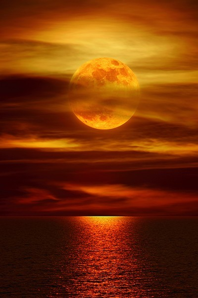 x-enial:  Moonlight Reflections, La Jolla, California (source)