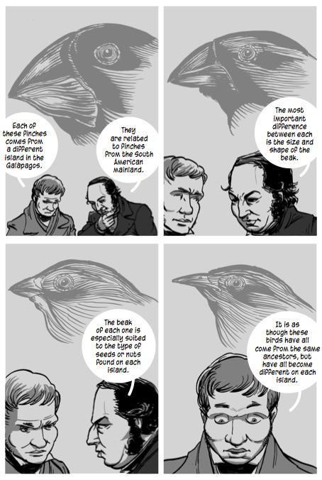 freshphotons:  Darwin: A Graphic Biography.  Brilliant. Do Want.