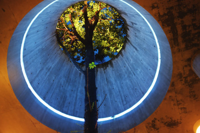 Refano Citra:Lamp Tree, Gardens by th Bay, Singpore 2013
