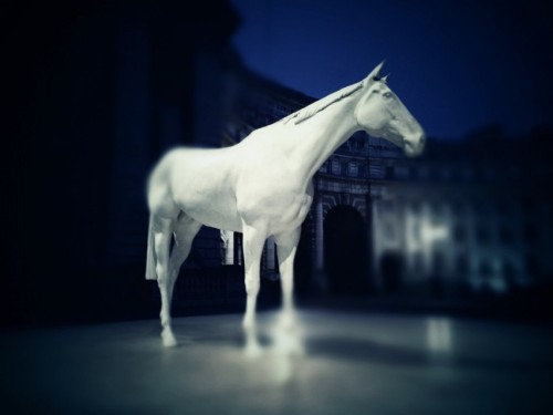 White Horse at The Mall, London by Mario Cavalli on EyeEm