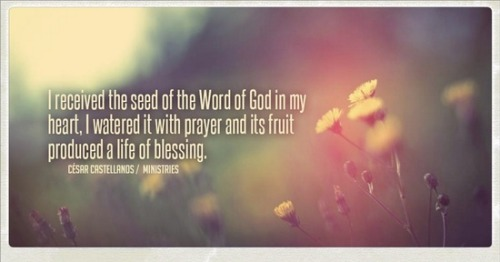 """I received the seed of the Word of God in my heart. I watered it with prayer and its fruit produced a life of blessing.' ~ @Cesar Castellanos"