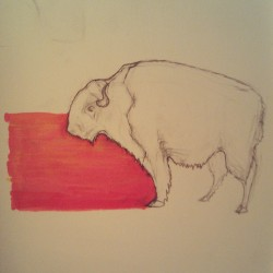 Rough day, but all in all in all not too bad. Here's a #sketch of a #buffalo. :)