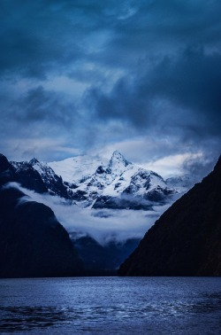 matsvri:  Deep in Milford Sound ✕ Stuck in Customs