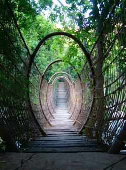 visitheworld:  The Spider Bridge in Sun City Resort, South Africa (by henrye).