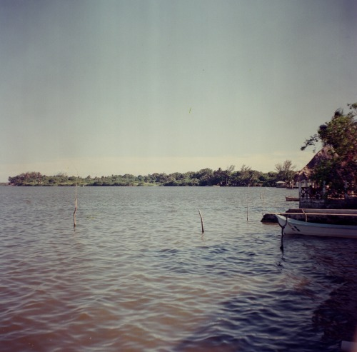 Laguna.Tampico Alto, Veracruz. Mexico. This is one of the very first photos I took with my Tower camera.It's been a while since I post a medium format photo in here.