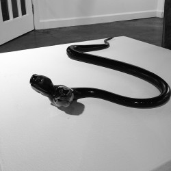 Snake! By @garmezygp     (at j fergeson gallery)