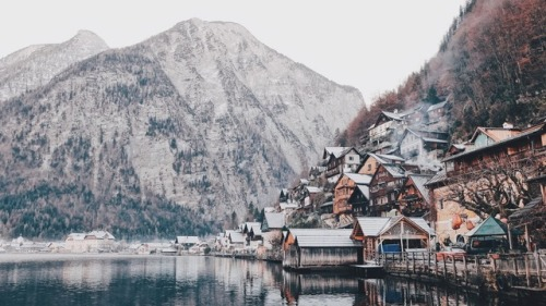 austria hallstatt mountains mountain life into the woods in the forest forest woods landscape amazing wow beautiful pale indie hipster adventure travel traveling travel blog travel pics explore wanderlust woodland cabin cabins cabin in the mountains wild wilderness wildenress wild life