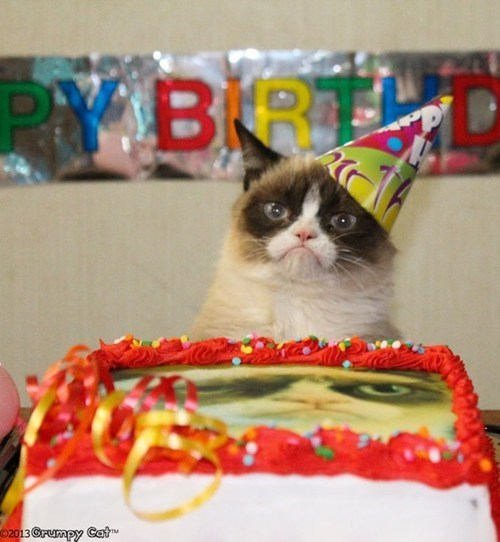 thedailywhat:  Happy Birthday, Grumpy Cat!  Our friend Tardar Sauce is celebrating her very first birthday today! With a Friskies campaign and a recent visit with Anderson Cooper, we're sure her second year will be even grumpier!