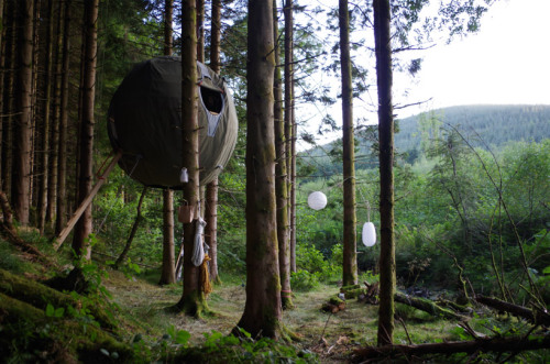 lifeasiseeittravel:  Tree Tent by Luminair Don't forget to check out my blog and hopefully follow :)