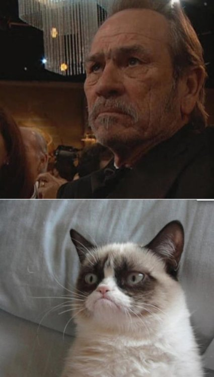 Tommy Lee Jones is Actually Grumpy Cat in Disguise Oh, that explains the whiskers.
