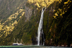 Sailing up to the Stirling Falls ♦ Milford Sound, Southland, New Zealand | by Roantrum