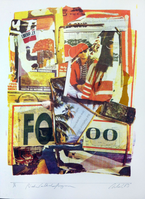 Rich Cultural Program Silkscreen, Collage 2013