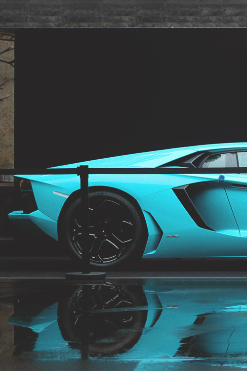 johnny-escobar:  Baby Blue Aventador