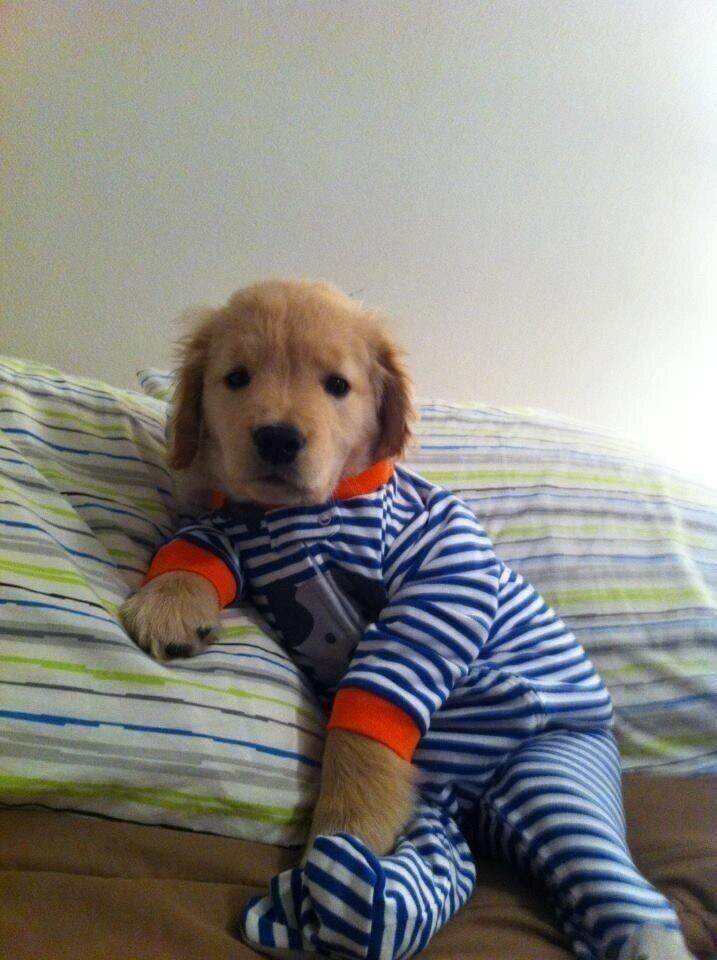 getting ready for bed time in my cozy onesie.