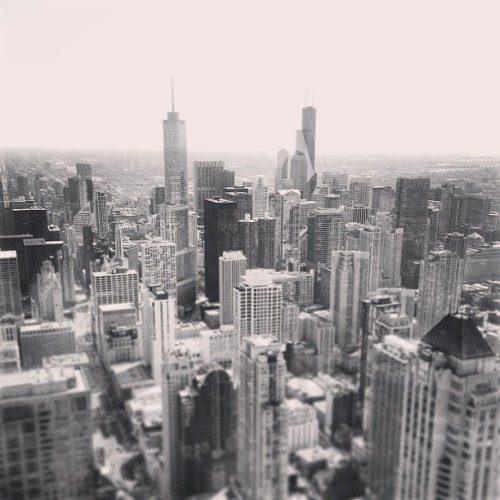 #chicago #skyline #skyscrapers #highrise #trump #sears #willis #hancock #illinois  (at Downtown - Chicago, IL)
